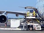 Para viajar en avión hay una serie de derechos para los pasajeros recogidos en la normativa aplicable