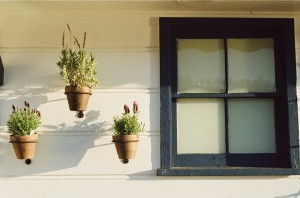 window-405861_640
